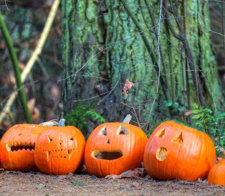 halloween famigros