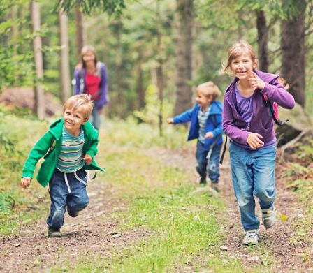 Herbst mit kindern famigros for Herbst im kindergarten