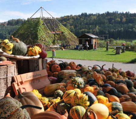 Herbst Mit Kindern Famigros