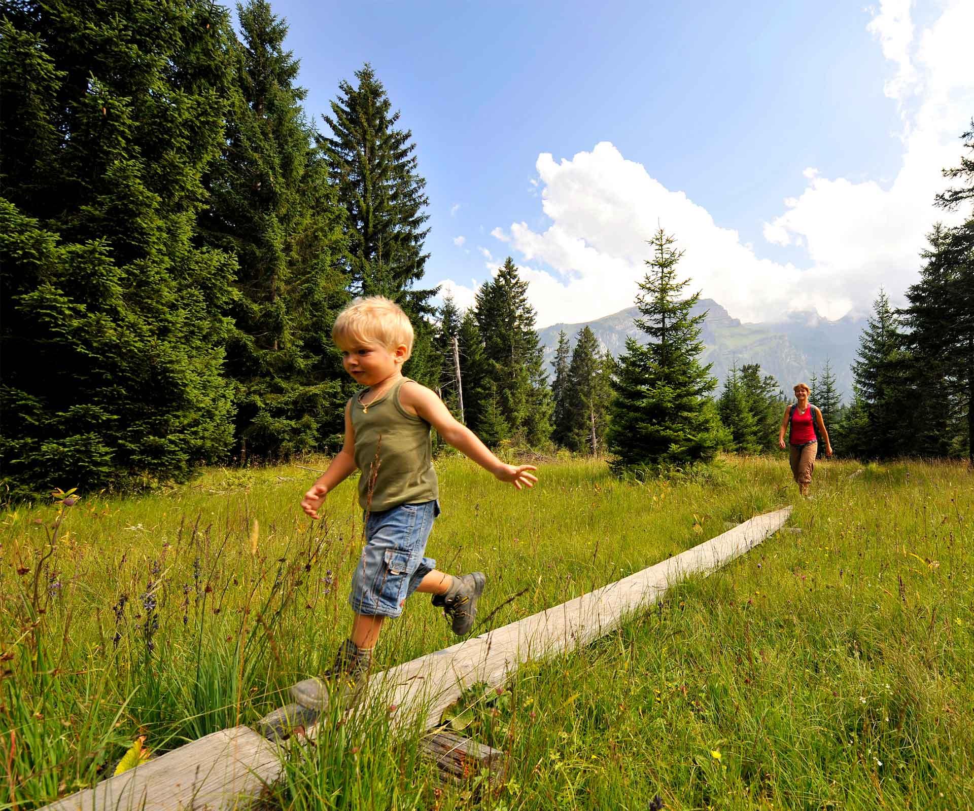 Wanderung Auf Dem Höhenweg Und Durchs: Wanderung Auf Dem Moorweg Gamperfin